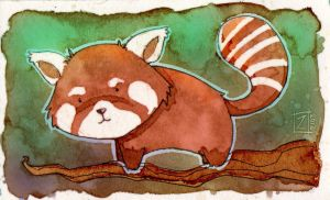 Red Panda by ZestyDoesThings