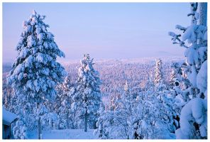 Winter Land by PvP