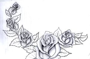 Roses by Hildemarie