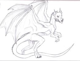Dragon Sketch by theredhoodie