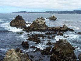 Point Lobos 2 by coffeenoir