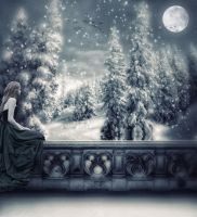 Fairy winter night by Azylis