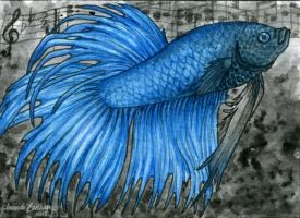 ACEO - Mo Betta Blues by M-Everham