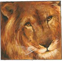 Aslan by Catherine1992