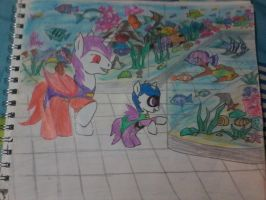 Un Paceo by kathy-251