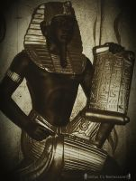 Scribe:Servant Of Thot by moon-of-ishtar