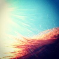 103 Hair Against the Sky by DistortedSmile