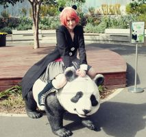 Ridding the panda by Totally-worthless