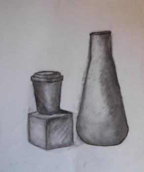 charcoal still life by ShelbyFoster