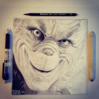 The Grinch by Steve-Nice