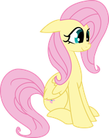 Fluttershy is Happy to Be Here by Quasdar