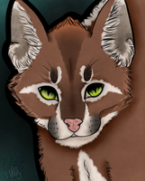 Kakii the Caracal by SpectrumStray