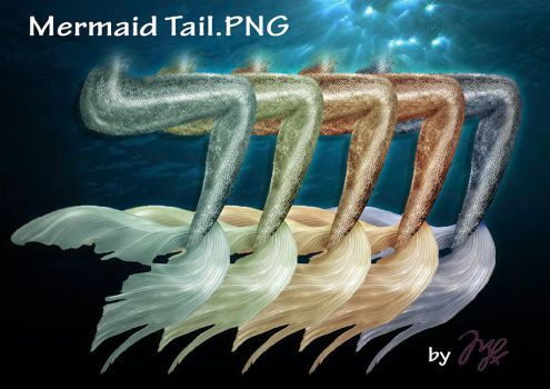 Mermaid Tail PNG by MLauviah