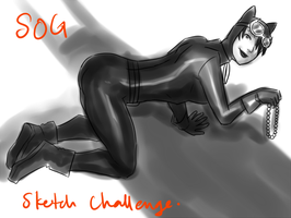 SOG Catwoman by Colours07