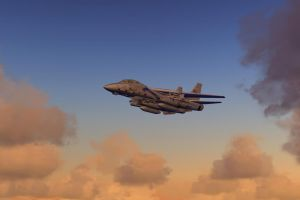 The Mighty Tomcat 2 by agnott