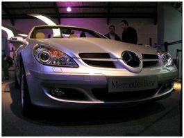 Mercedes 2 by tomegatherion