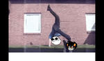 Dave and Karkat GIF by luckydogfangirl01