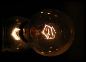 Bulb by Dave3of4