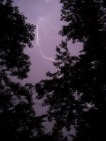 When lightning strikes... by Because-Im-Me