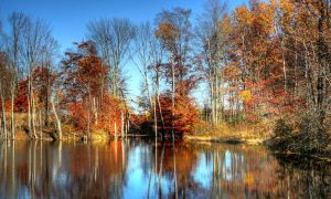 Pond-HDR509071c646362 by VacantHaze