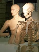 Mannequin Stock 1 by hatestock