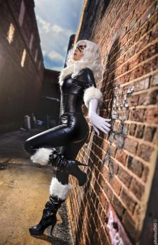 Marvel: Black Cat V by hibiscus-sama