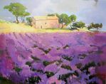 Provence Lavender Field by chubby-manatee
