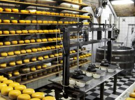Cheese Factory by Shampooth
