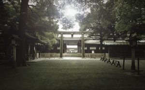 Meiji Shrine by xall