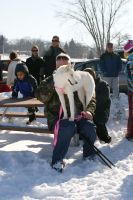 Dog Sled Event 6 by NamekAngelIvy