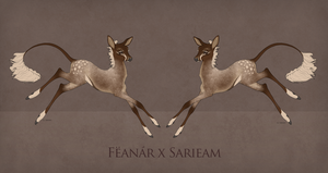 Feanar x Sarieam Foal Design by TigressDesign