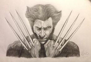 Wolverine (Hugh Jackman) Pencil Sketch by AimzzArt