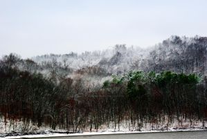Kentucky Lake Winter by flowersteph