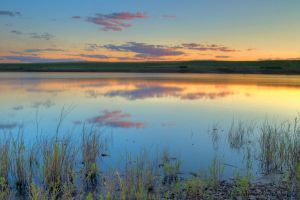McKay Wildlife Refuge by adamsimsphotography