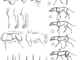 Wolf Tutorial by JustoKazu