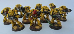 Imperial Fist Tactical Squad 2 by Ninestar