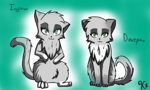 Ivypaw and Dovepaw by Kiichiii