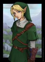 Link - Twilight Princess 2 by keevs
