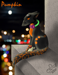 Pumpkin of the StationSide by Moonflight-RiverClan