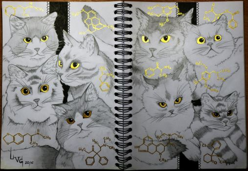 Cats n' Drugs by LittleVioletGhost