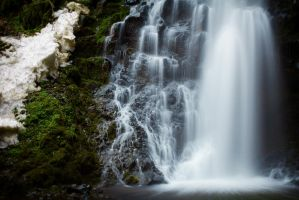 Feathered Falls by dellamort