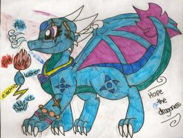 Hope the Dragon Ref by dragonpop1