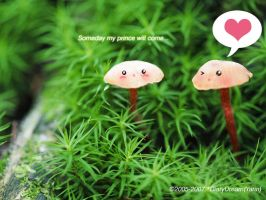 Someday my prince will come by DiaryDream