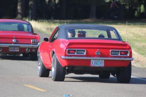 Camaro after a Mustang by finhead4ever
