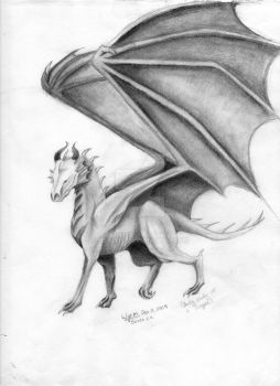 Dragon Study by Heigris