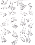 Front Paw Reference Dump by That-One-Midget