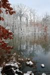 Winter Reflection 1318 by Sooper-Deviant