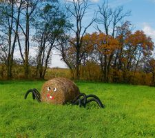 Arachnid by GlassHouse-1