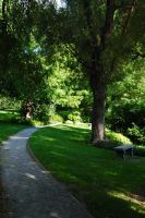 MT. Auburn Pathway 2 by dollieflesh-stock