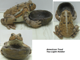 American Toad Tea Light Holder by DancingVulture